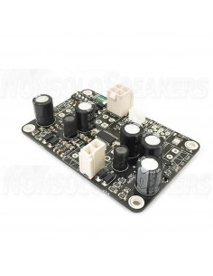 Luxus Audio Vivaldi MV - Class D Amplifier 1x30W @ 8ohm - Balanced input - Vertical Molex
