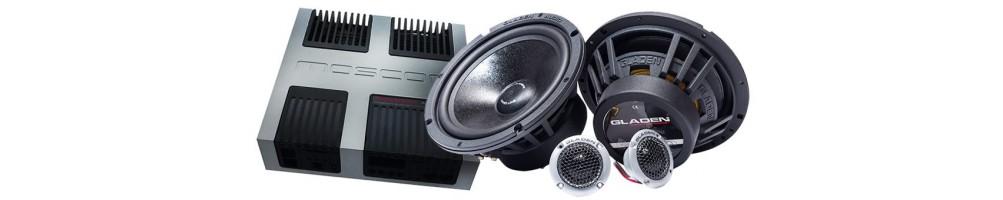 Amp + Speaker