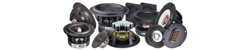 All speakers chassis