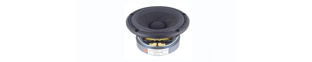 Hifi Speakers chassis