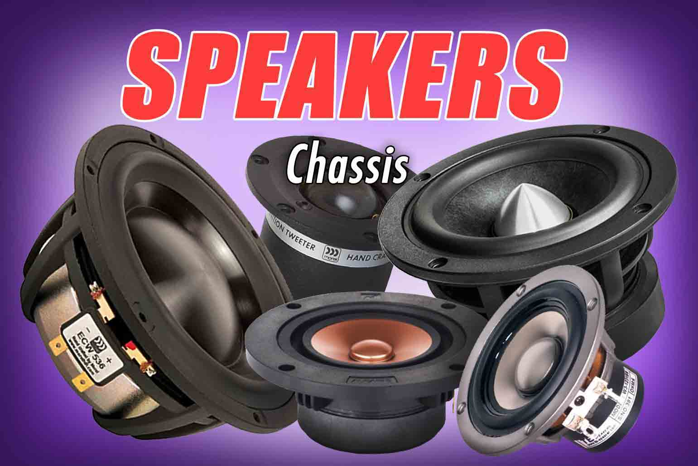 nonsolospeakers-speaks-chassis.jpg
